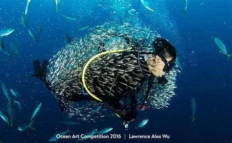 The Best Underwater Photographs Of 2016 Are Amazing