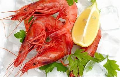 Seafood Shrimp Wallpapers Kepiting 4k Crabs 1080p