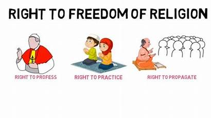 Clipart Fundamental Constitution Rights Equality Freedom Constitutional