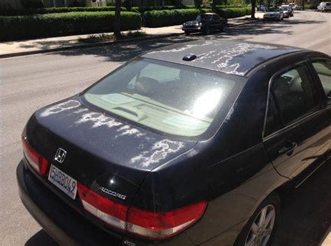 2004 Honda Car Paint Problem