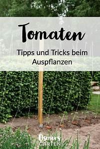 Tomaten Rankhilfe Selber Bauen : tomaten vermehren pflegen ernten teil 5 auspflanzen und rankhilfe diy tomaten garten ~ A.2002-acura-tl-radio.info Haus und Dekorationen
