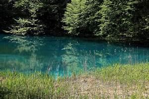 Baum Am Wasser : kostenlose bild wasser natur see landschaft wasser ~ A.2002-acura-tl-radio.info Haus und Dekorationen