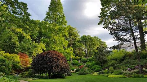 botanical gardens cleveland 6 organizations fostering beautiful green spaces in