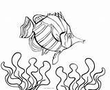 Fish Coloring Pages Printable Aquarium Realistic Ocean Nemo Getcolorings Tank Cool2bkids sketch template