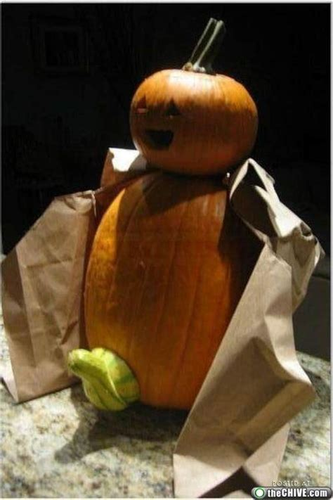 patterns  funny pumkin pictures  news icon