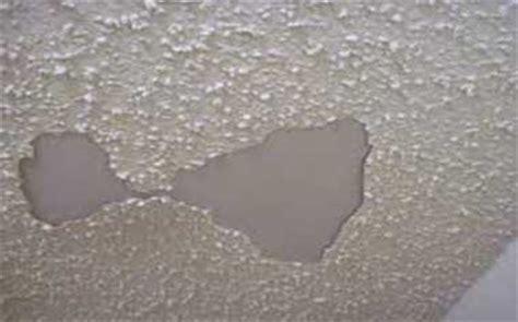 jonny   spot home inspections licensed home