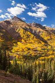 Ouray Colorado Fall Colors