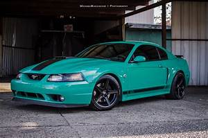 Grabber Green 2004 Mach 1 - Photo Shoot - The Mustang Source - Ford Mustang Forums