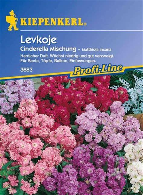 Garten Kaufen Mühlacker by Levkojen Mischung Tom Garten Auf Blumen De Kaufen