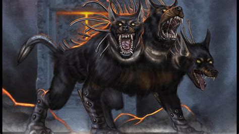 top quality cerberus images wonderful collection