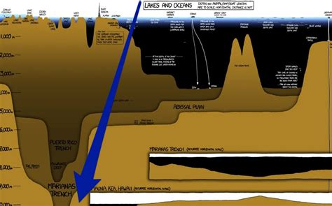 How Deep Is The Ocean (3 Mustsee Infographics) » Salt Strong