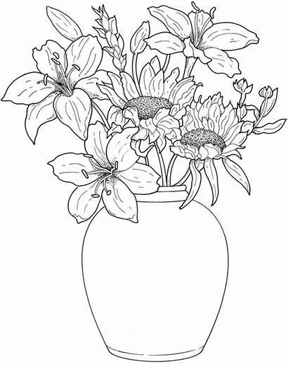 Flores Desenhos Desenho Cerdas Um Colorir Passo