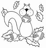 Coloring Acorn Squirrel Pages Eat Sheets Fall Printable Squirrels Colouring Sheet Adult Cartoon Colornimbus Toddlers Craft Drawings Coloriages Getcolorings Cute sketch template