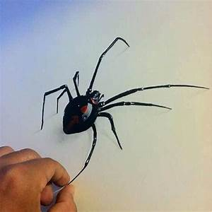 Black widow #spider art #drawing #sketch colored pencils ...