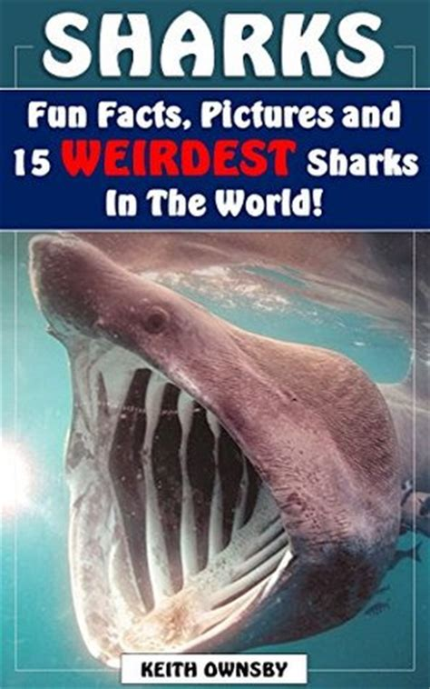 sharks  weirdest sharks   world shark fun facts