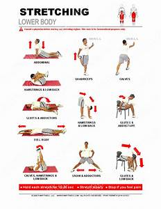 Lower Body Stretching Guide