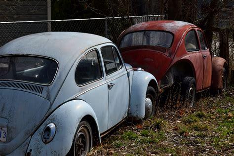 Volkswagens Challenge Hedley Men - Living Significantly