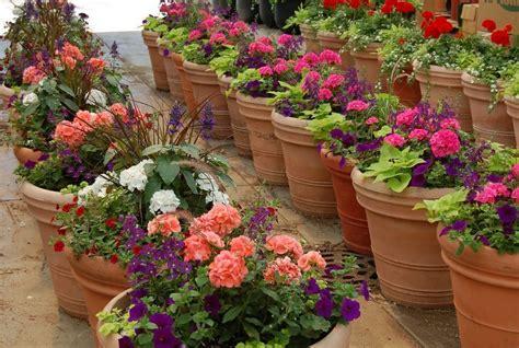 Patio Container Garden Ideas, Patio Container Garden Ideas