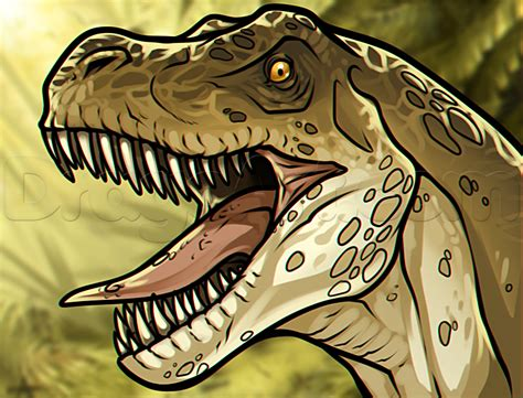 draw   rex head step  step dinosaurs animals