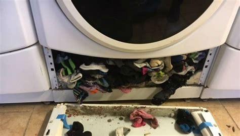 proof  washing machine   eating  socks newshub