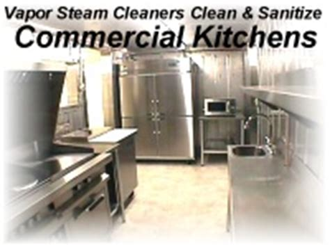 commercial kitchen cleaing kill sewer flies vapor steam
