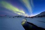 49 Fun and Interesting Alaska State Facts — Gray Line ...