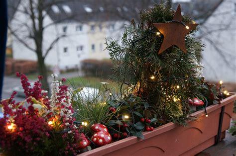 balkonkästen im herbst weihnachtliche balkonk 228 sten 2012 green planet