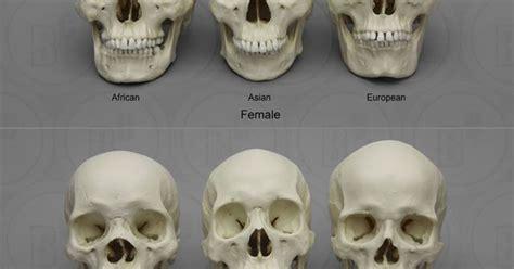 Human Anatomy References