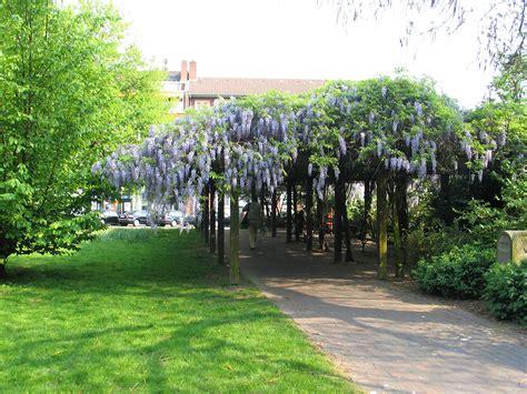 Garten Und Landschaftsbau Hiddenhausen by Baumschule G Stein Garten Und Landschaftsbau