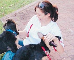 koleksi gambar artis islam malaysia  pegang anjing life   fab lame