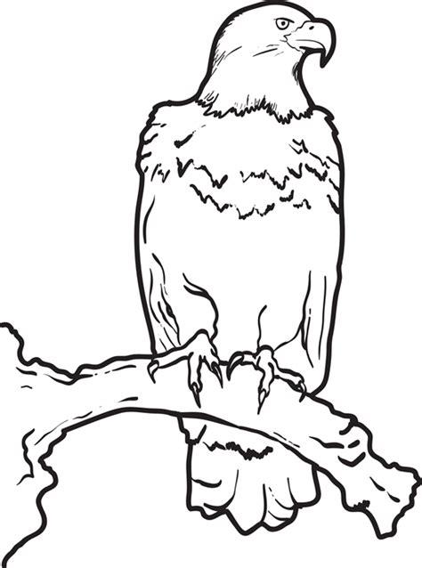 desenhos de aguias  imprimir  colorir animais