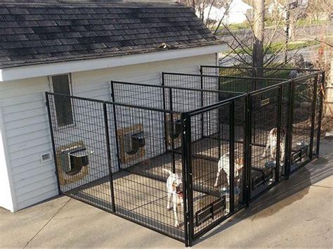 outdoor kennel indoor outdoor kennel myfavoriteheadache com