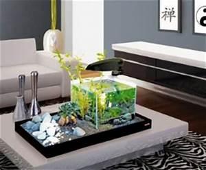 zengarten mit aquarium glucklich pleite With französischer balkon mit miniatur zen garten