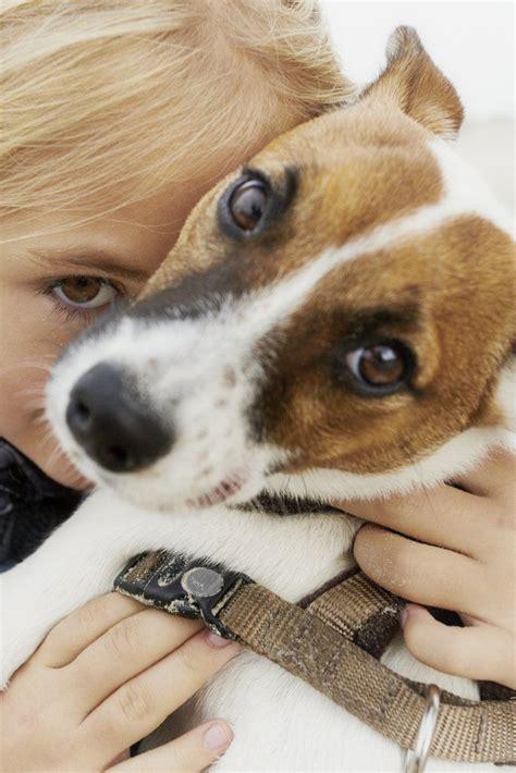 kind  dog    aww kinds  dogs