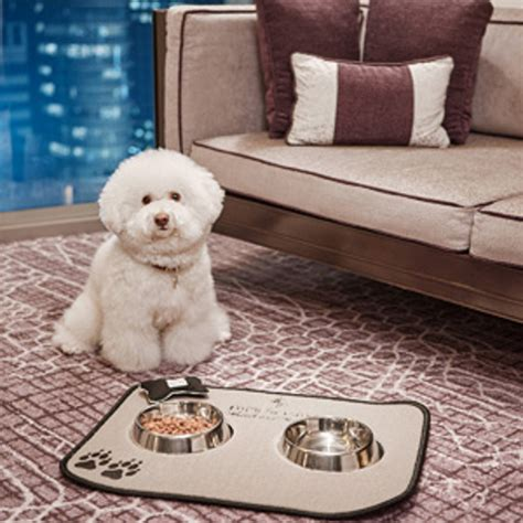 what is the importance of the pet friendly hotels while