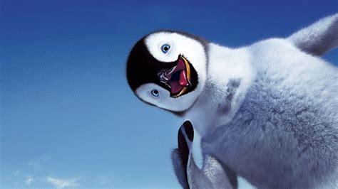 Happy Bird Penguin Hd Wallpapers
