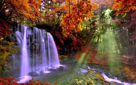 Waterfall And Sunbeam In Autumn Forest Hd Wallpaper Background Image 2560x1600 Id698834