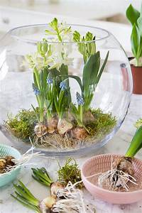Blumenzwiebeln Im Glas : fr hlingserwachen mit blumenzwiebeln dekorieren ~ Markanthonyermac.com Haus und Dekorationen