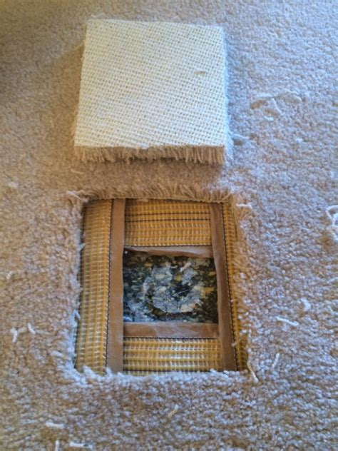 Mold Removal Kitchener by Healthy Living Repairs Damaged Carpet With Bonded Insert
