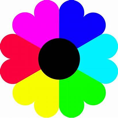 Colors Clipart Flower Petal Symmetry Openclipart Drawing