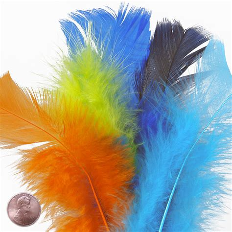 colored feathers color coverlet turkey feathers clearance paper mart