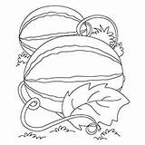 Watermelon Coloring Pages Toddler sketch template
