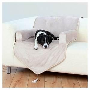 Panier Chien Design : le tapis pour chien grande taille est ici ~ Teatrodelosmanantiales.com Idées de Décoration