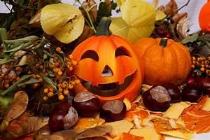 Schöne Herbstbilder Kostenlos : halloween herbst 3 lizenzfreie fotos bilder kostenlos ~ A.2002-acura-tl-radio.info Haus und Dekorationen