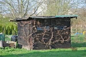 Baugenehmigung Für Gartenhaus : baugenehmigung f r gartenhaus beantragen my blog ~ Whattoseeinmadrid.com Haus und Dekorationen