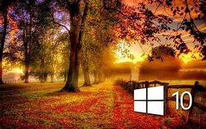 Windows Autumn Desktop Wallpaper