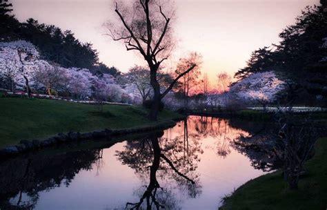 calming   japans landscapes captured  hidenobu