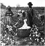 The Disaffected Lib  How the South Kept Slavery Alive for Generations      Slavery In The South
