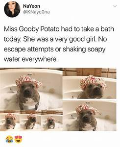 25+ Best Memes About Soapy | Soapy Memes