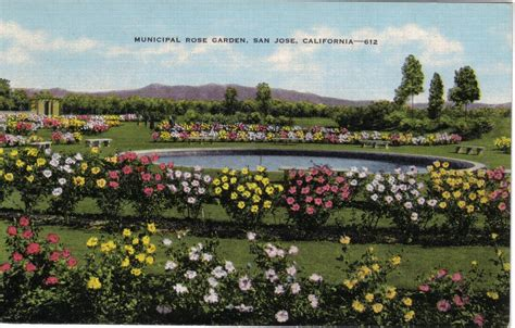 municpipal garden san jose california 612